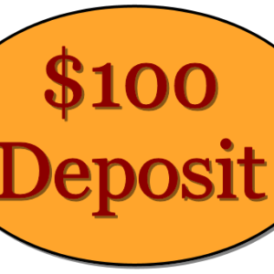 deposit-100-dollar