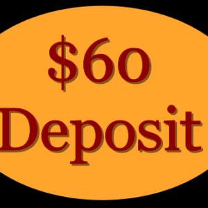 deposit-60-dollar