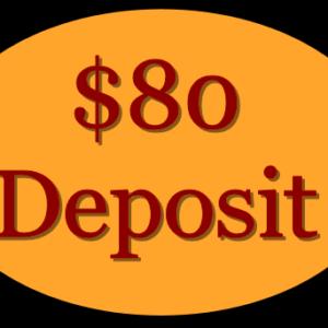deposit-80-dollar